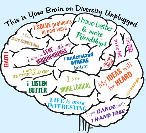 Brain on Diversity Unplugged