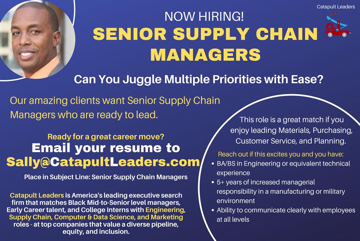 Senior Supply Chain Job - Catapult Leaders